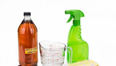 how to use flea spray in your house