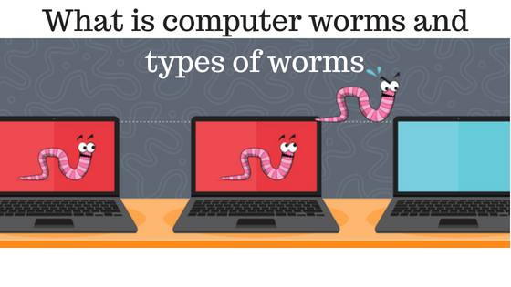 what is computer worm and types of worm,