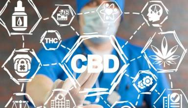 CBD tolerance and addiction Facts to help you put your worries to rest