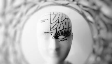 Brain Abnormalities