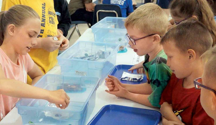 6 Innovative Ideas To Teach Science To Elementary Class ...
