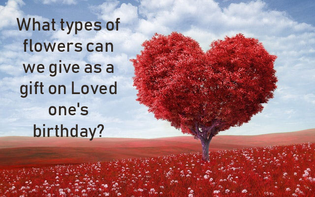What types of flowers can we give as a gift on Loved one's birthday