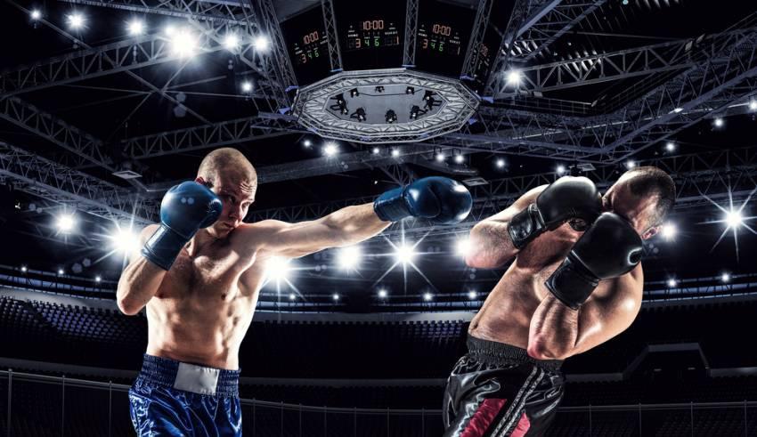 Professional-Boxing