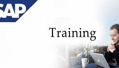 Sap ewm course online