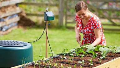 13 Cheap and Easy DIY Irrigation Systems for a Self-Watering Garden