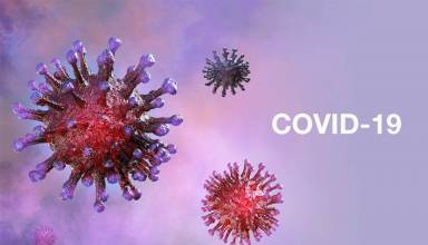 All You Need to Know About SARS-CoV-2 (Coronavirus)