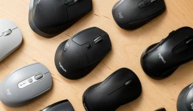 5 Things You Must Consider Before Bunting a Computer Mouse