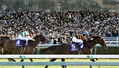 How To Plan And Place Bets For Horse Racing?