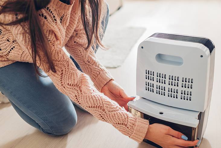 All about dehumidifiers.