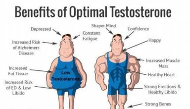 How does testosterone work?