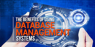 This is how developing a business database will benefit you