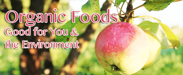 organic foods better for environment