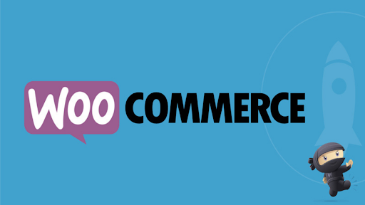 A Guide On Woo-Commerce