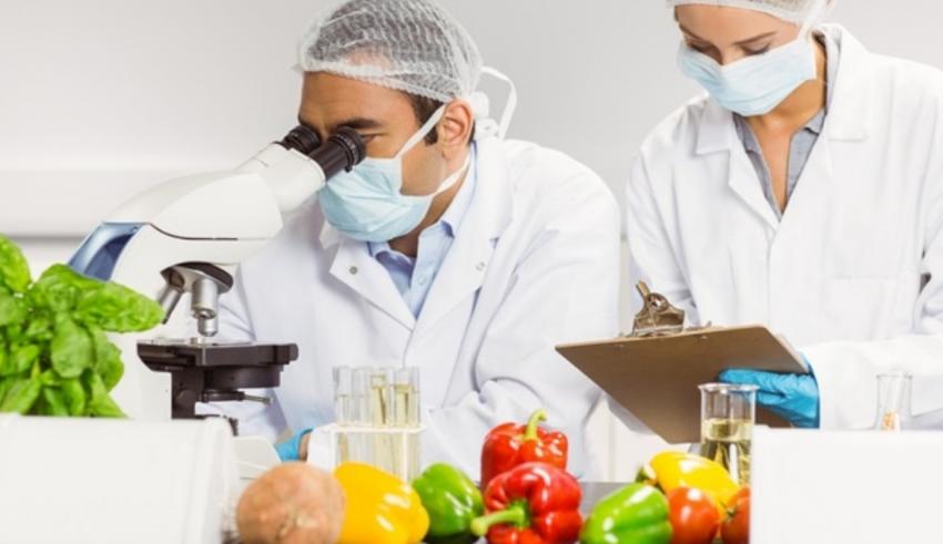 Food Scientist Consultant