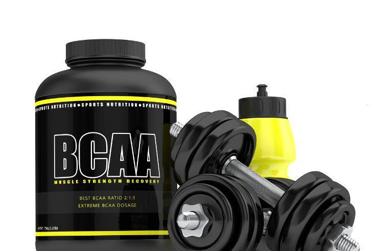 best BCAA supplements for training
