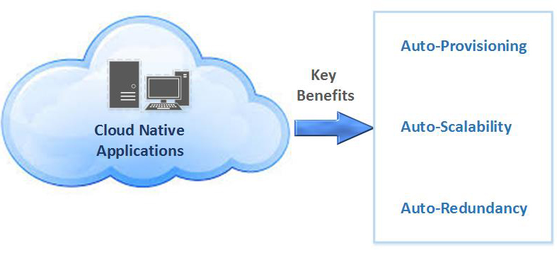 Advantage of the Benefits Provided by Cloud-Native Infrastructures?