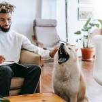 5 Essential Items for New Dog Owners