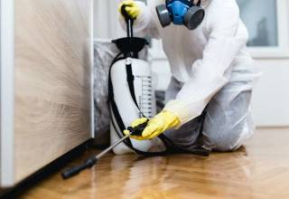 professional exterminators in Marlborough
