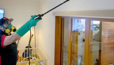 Pest Control Services in Adelaide