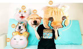 Order Custom Pet Pillow from Diipoo