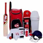 How to choose the best cricket set for your kids?