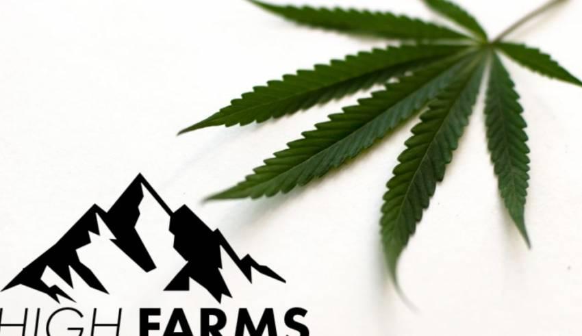 High Farms partners