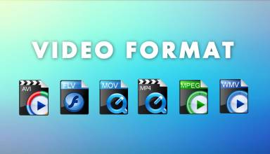 Descriptions of the MP4 Video Editor and the MP4 Video Format