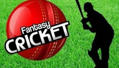 Reach the Next Level Online Playing Platform of Fantasy Cricket