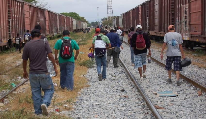 Asylum Process